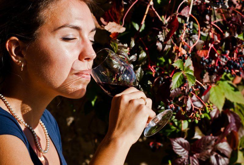 Séjour Vignobles